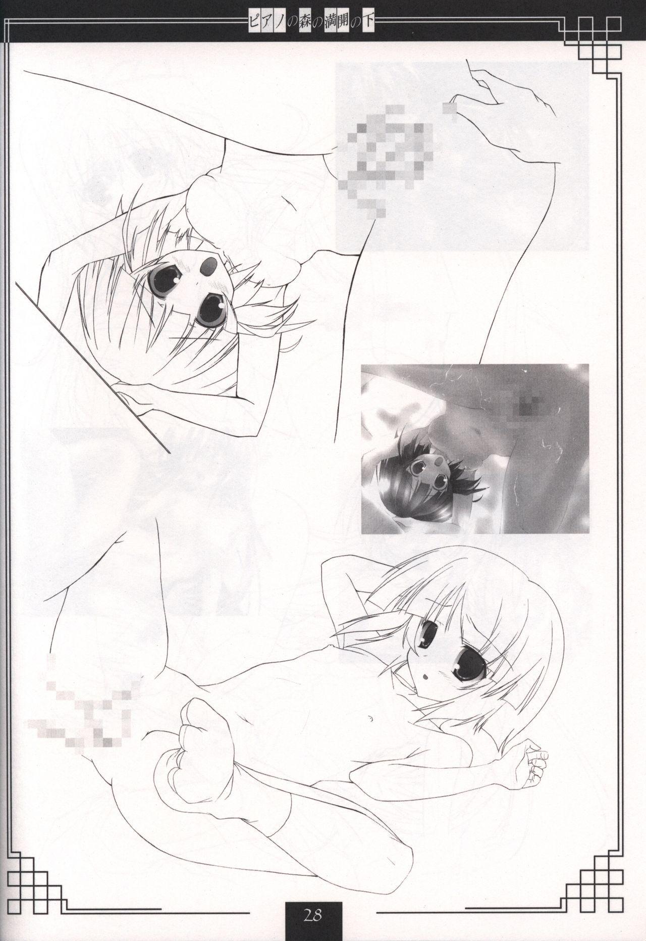 Piano no Mori no Mankai no Shita illustration art book 26