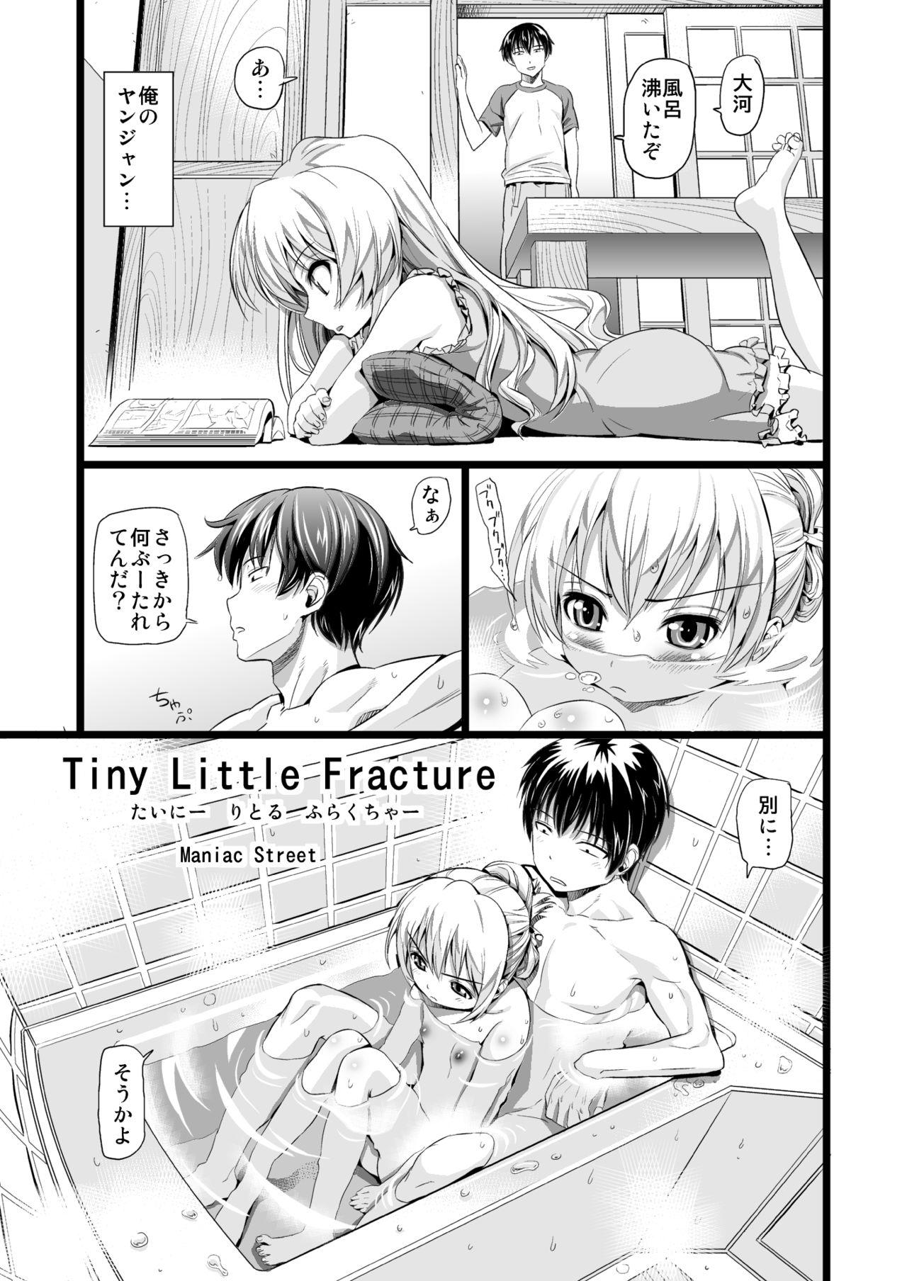 Tiny Little Fracture 1