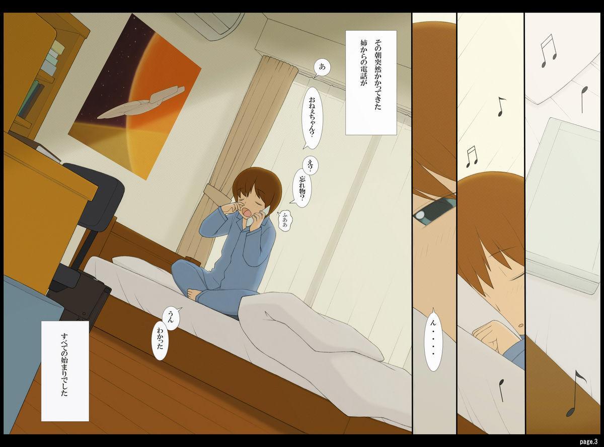 Ponpharse Vol. 3 - Toshiue no Oneesan Hen 2
