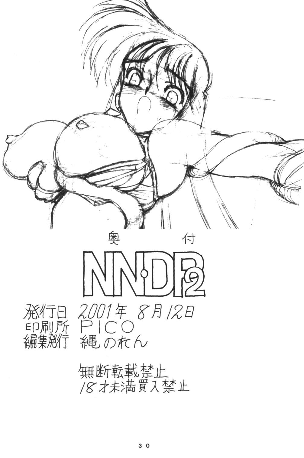NNDP 2 29