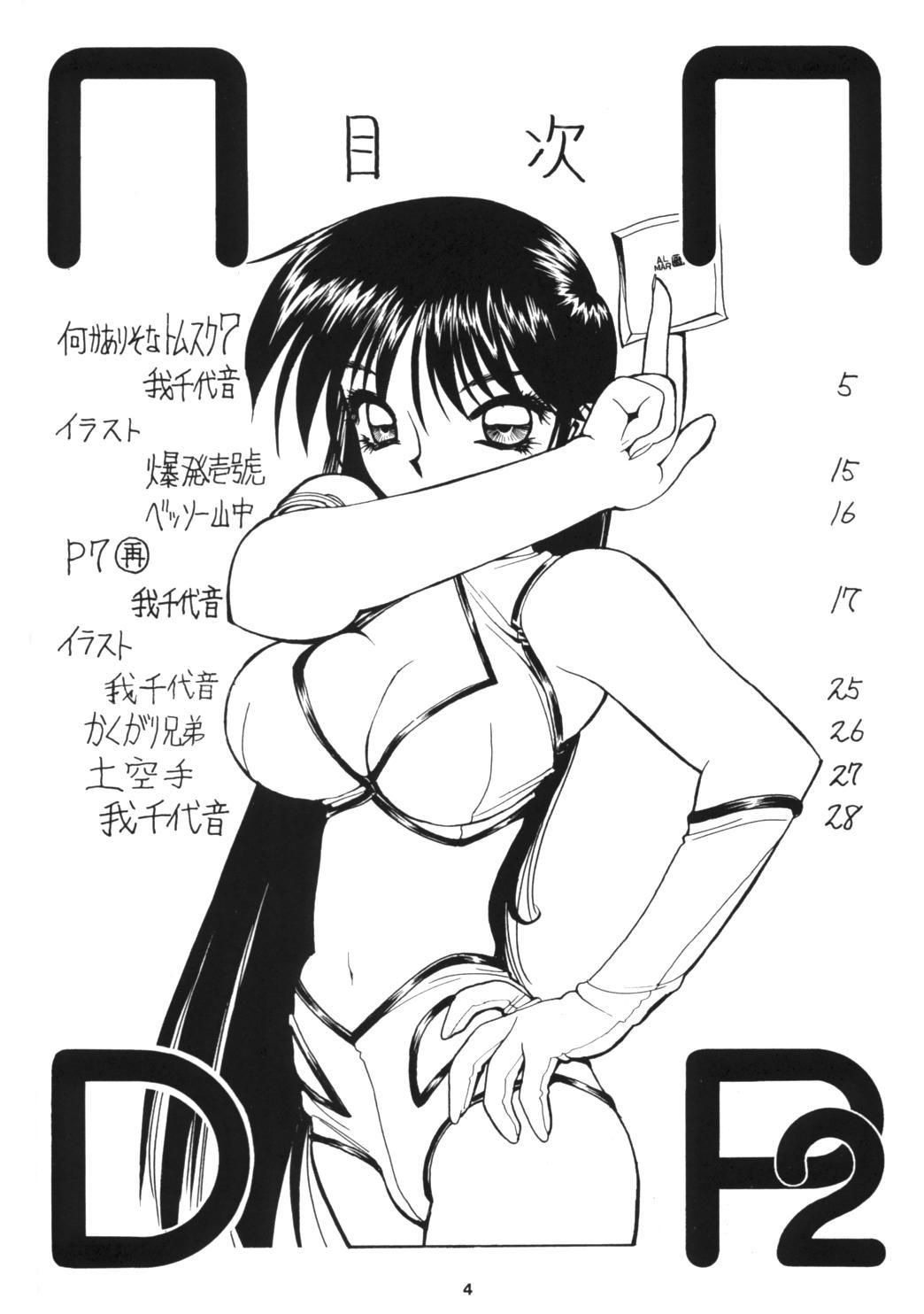 NNDP 2 3