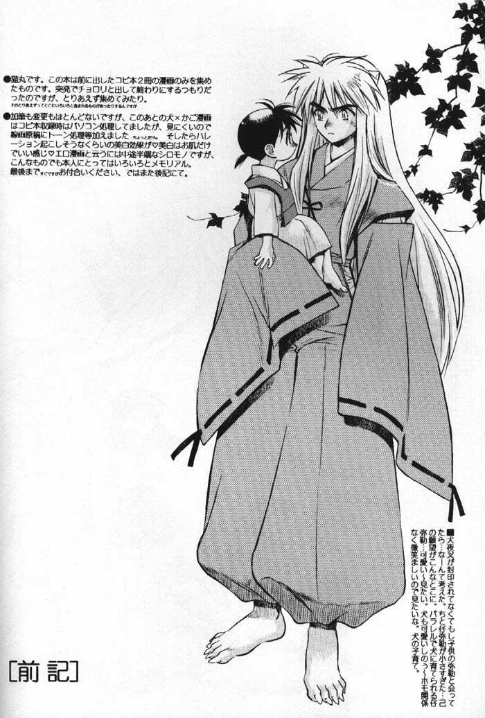 Inuyasha Doku Hon 2