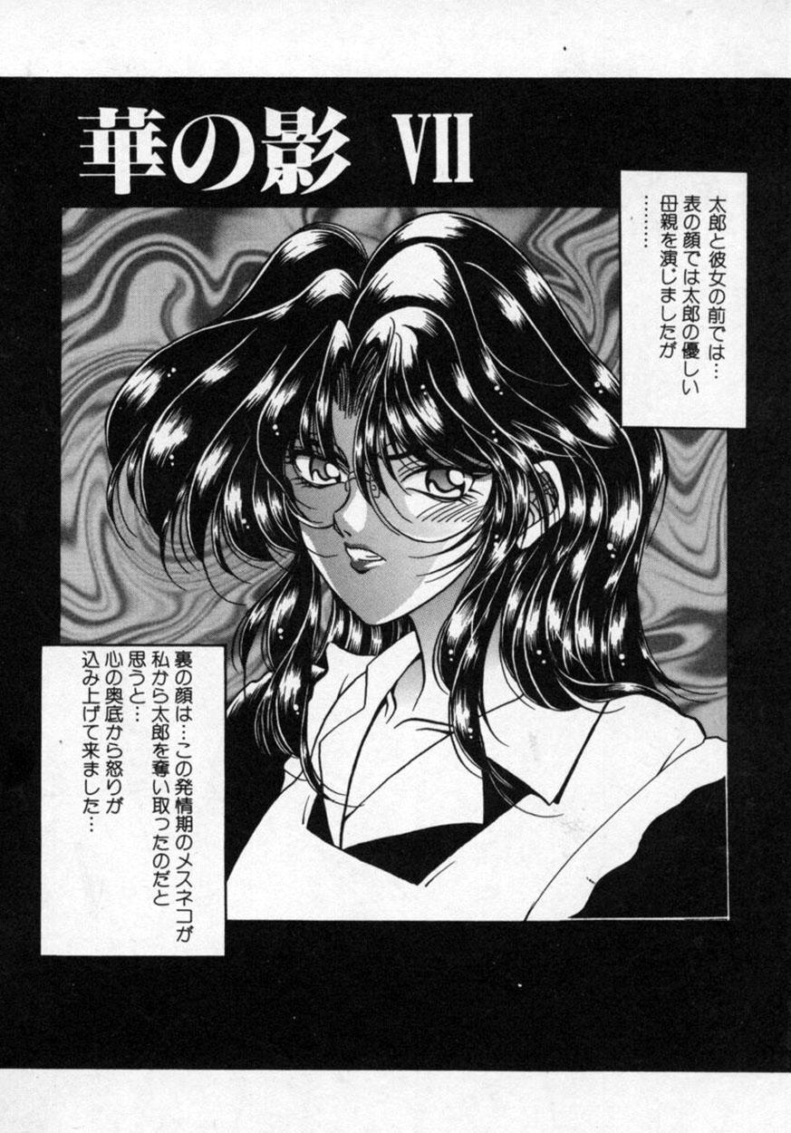 Hana no Kage   Shadow of Splendor 100