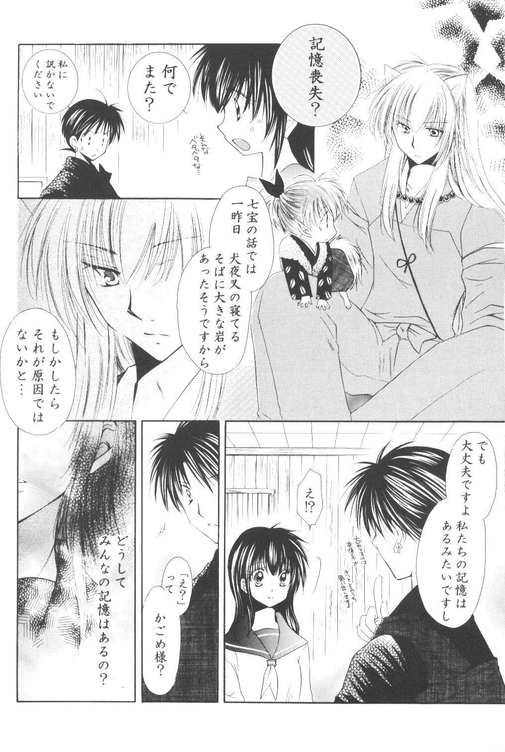 Ryuusei Ryodan 11