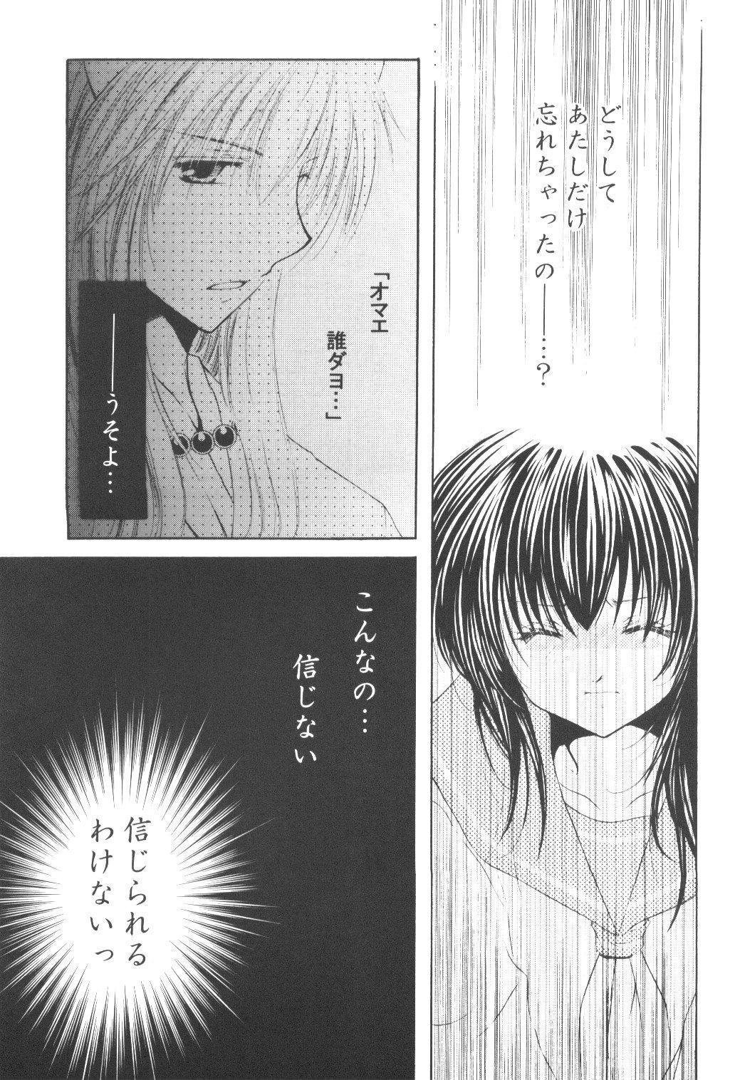 Ryuusei Ryodan 12