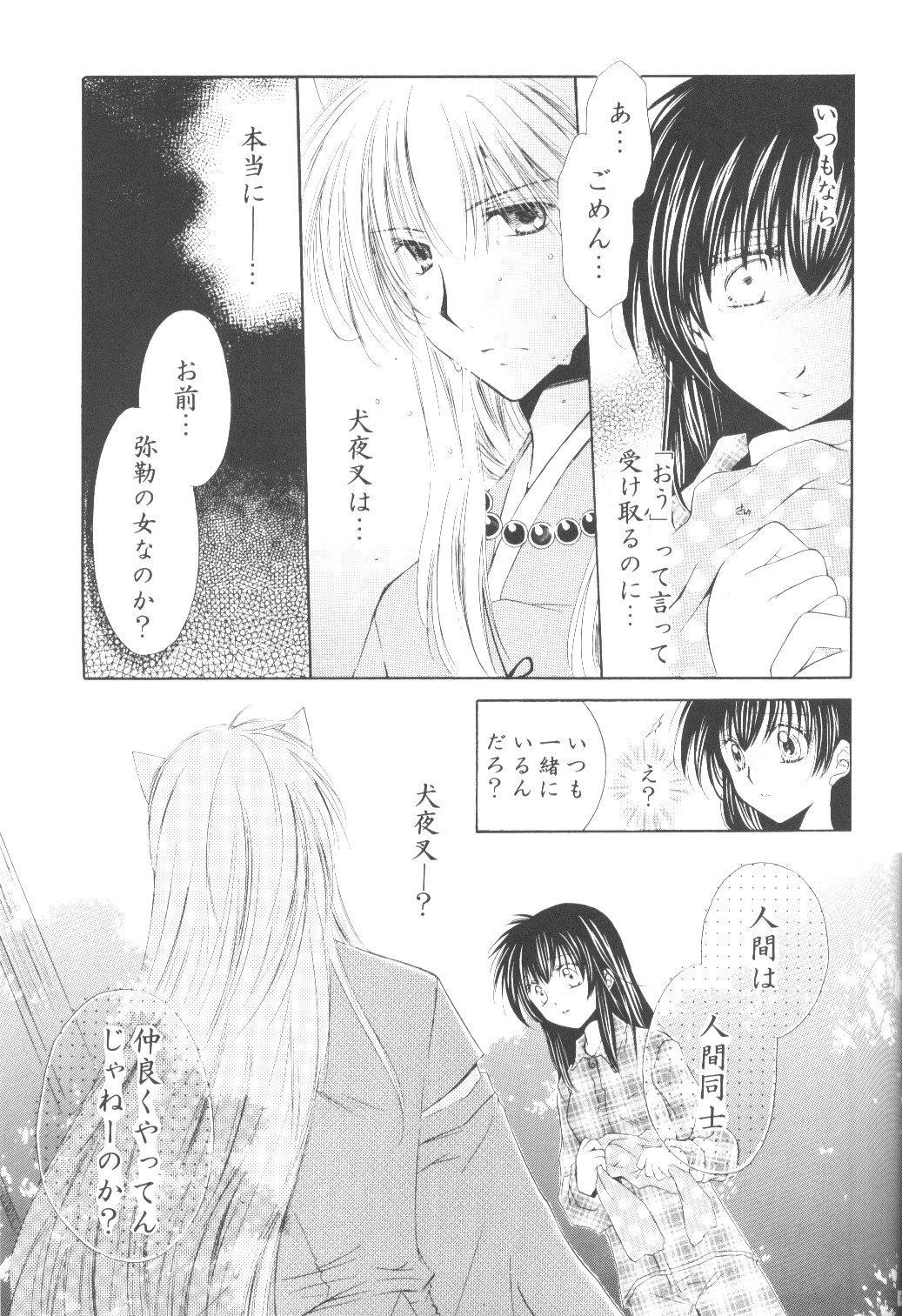 Ryuusei Ryodan 14