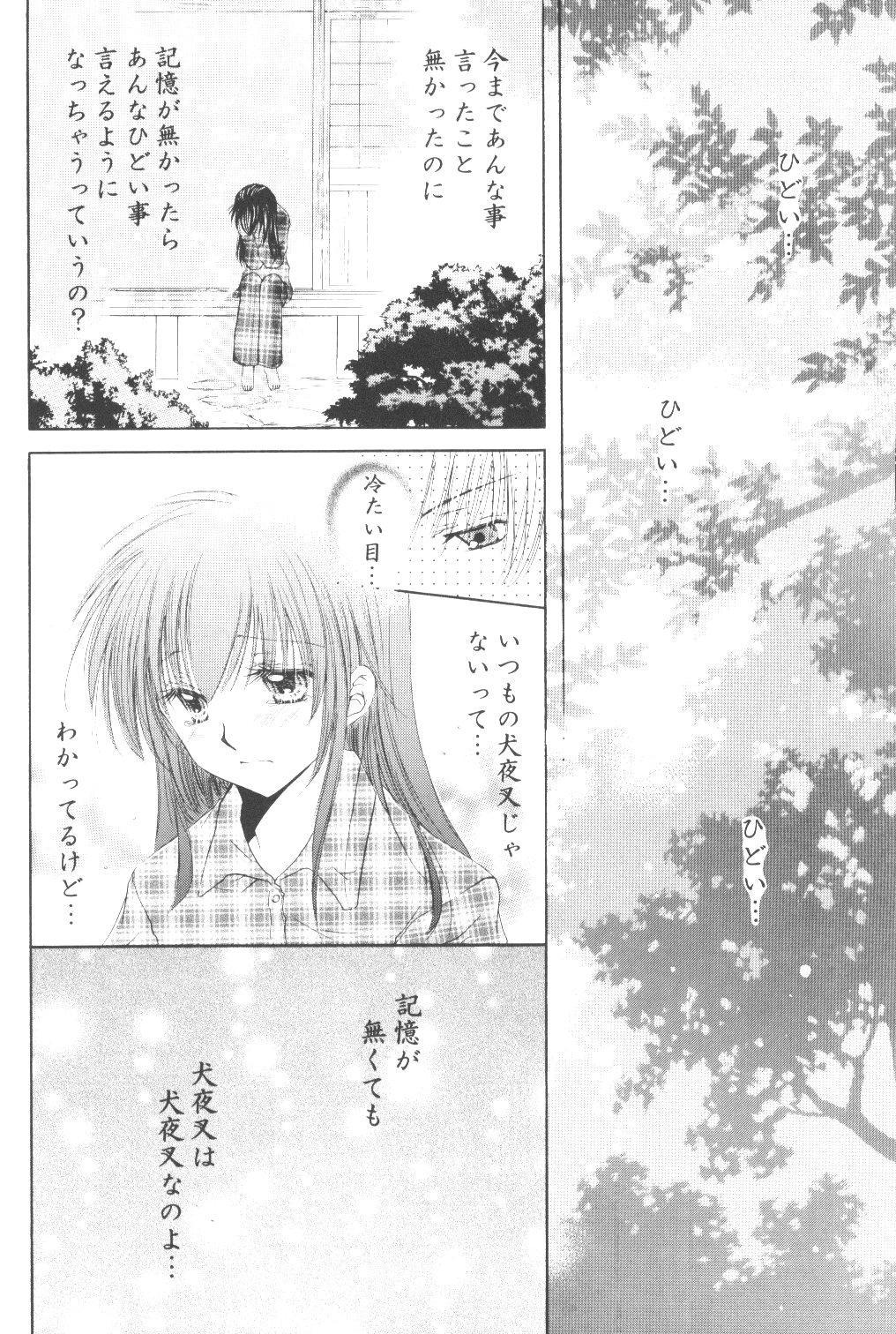 Ryuusei Ryodan 17
