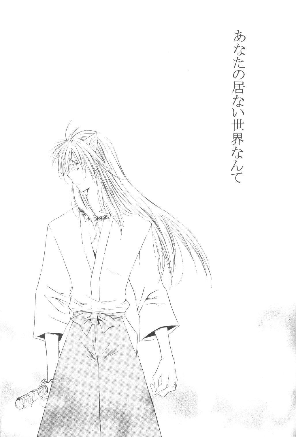 Ryuusei Ryodan 2