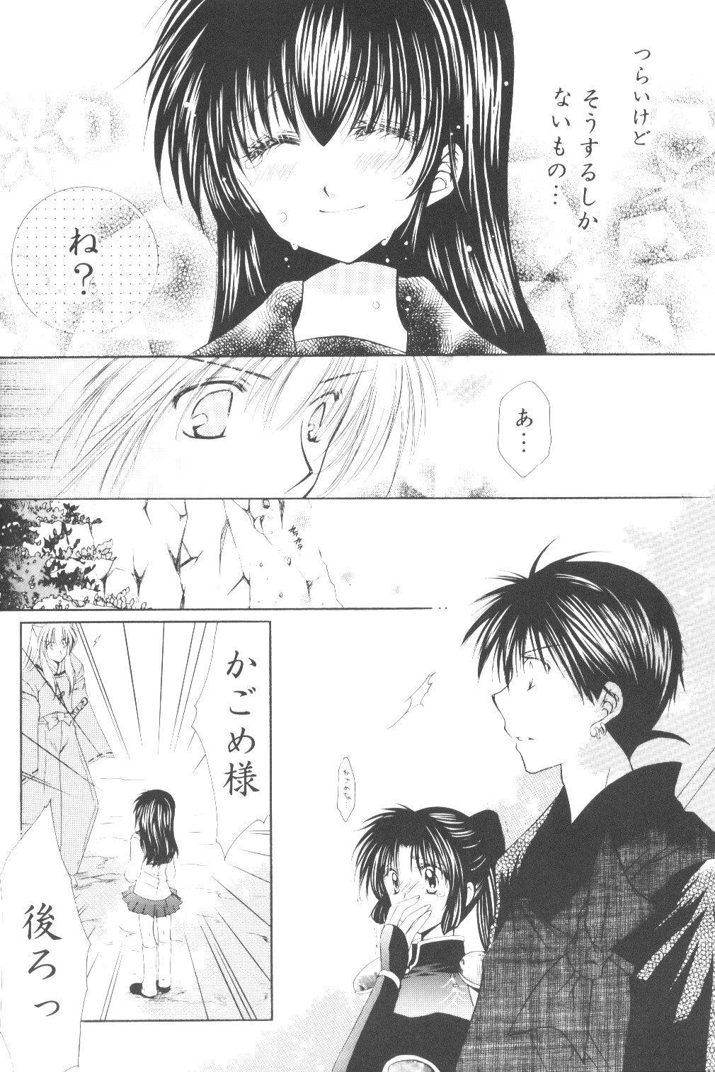 Ryuusei Ryodan 29