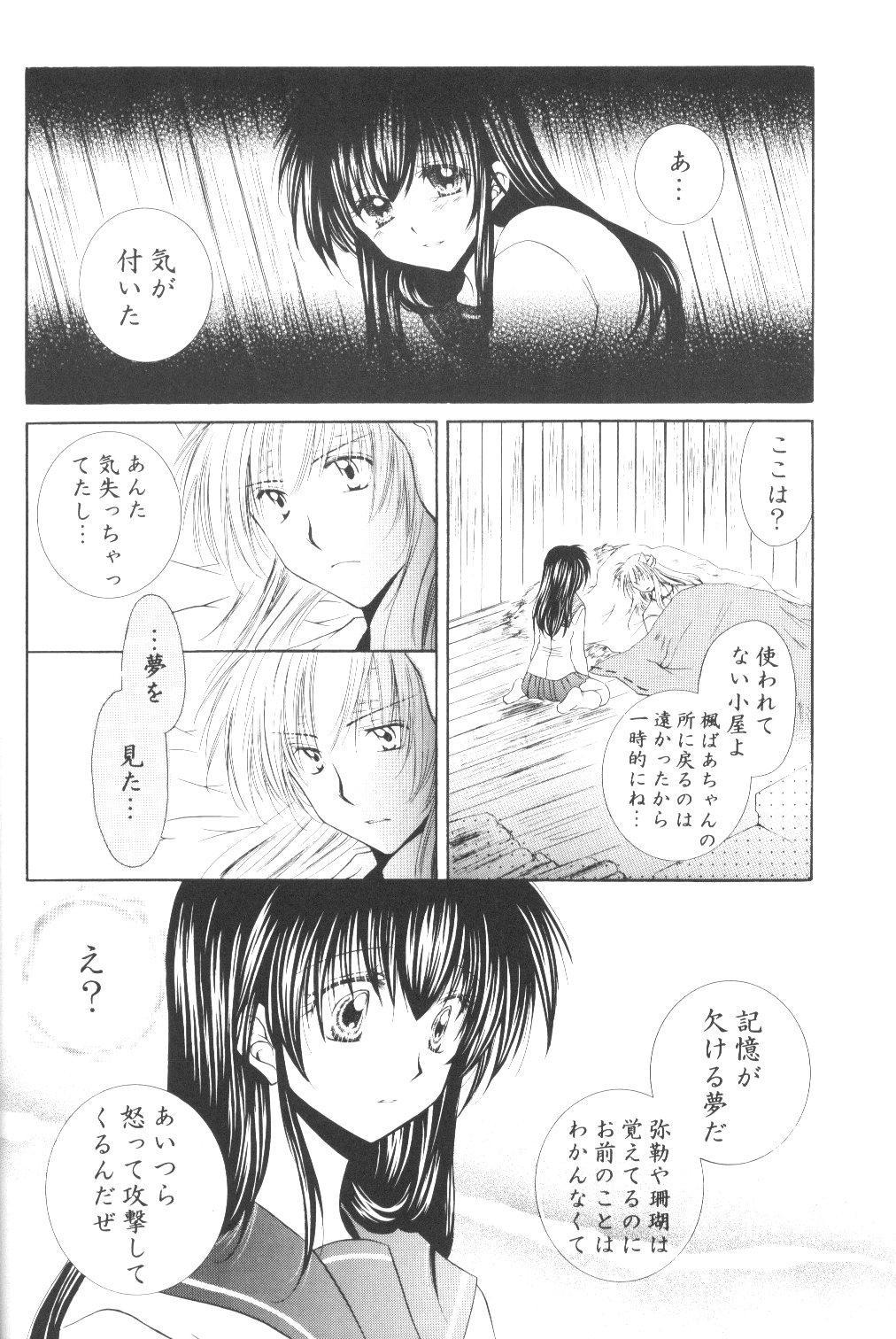 Ryuusei Ryodan 33