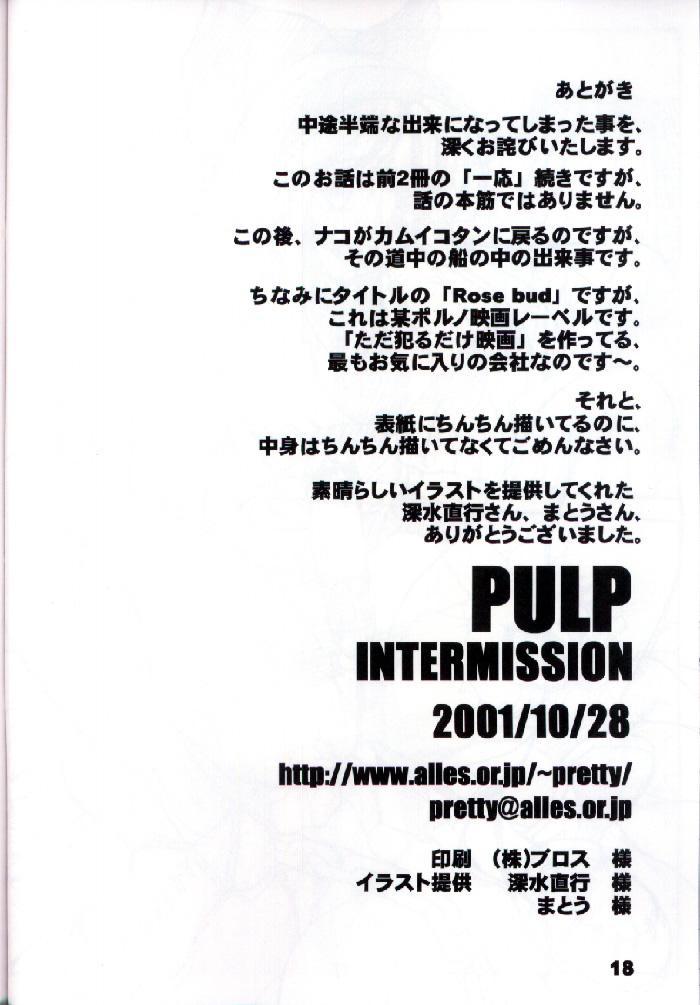 PULP INTERMISSION 16