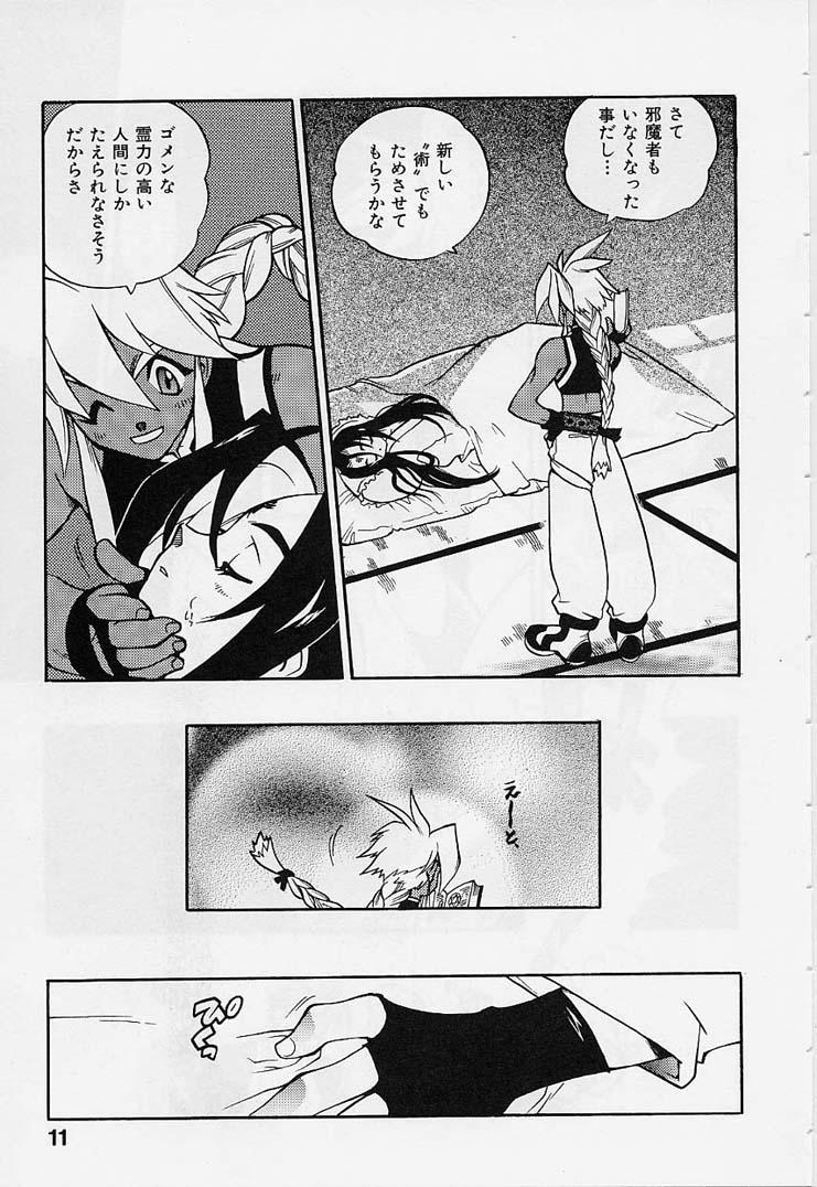 Fuusatsu Hyakkai 12