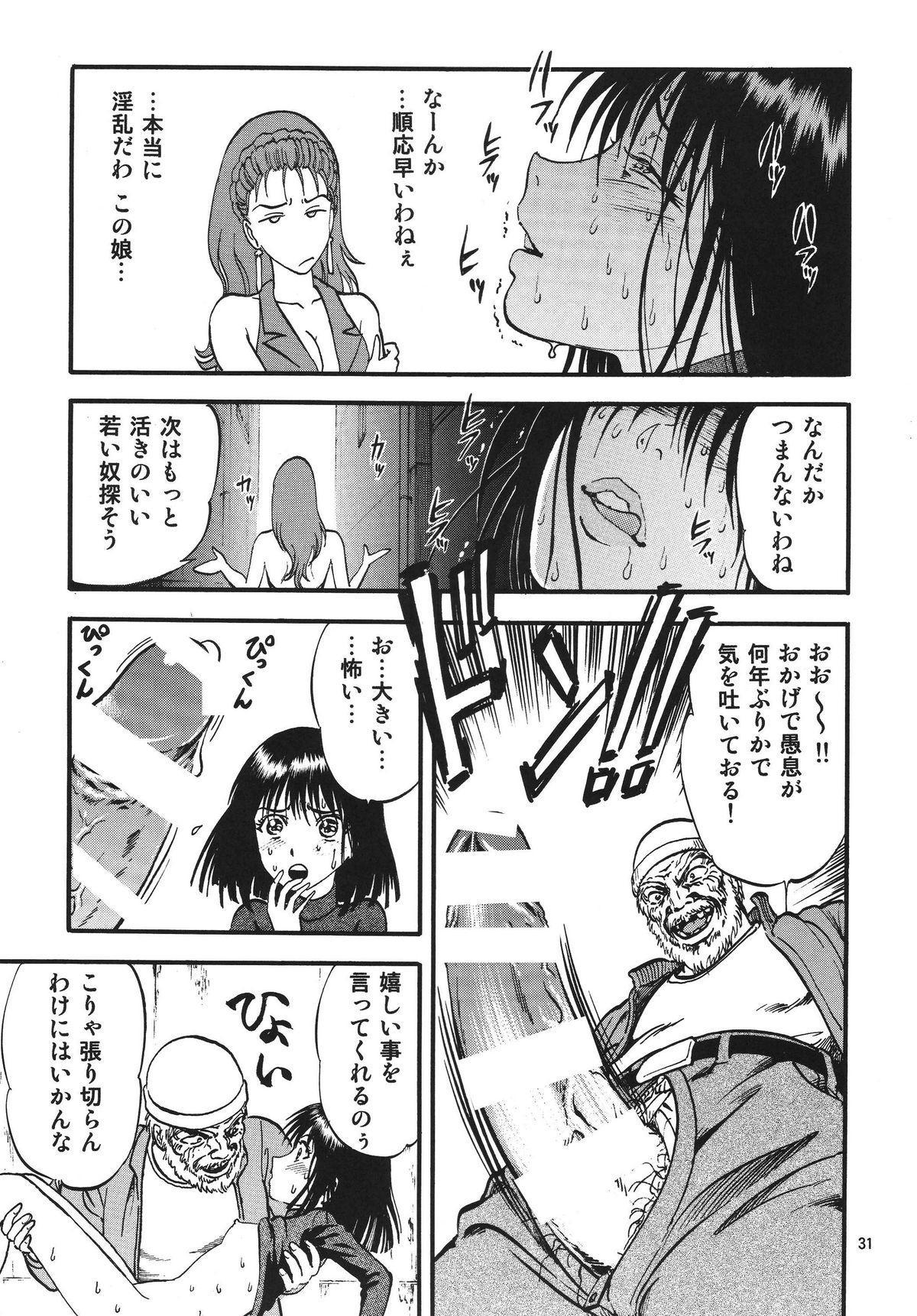 Hotaru no Shizuku 30