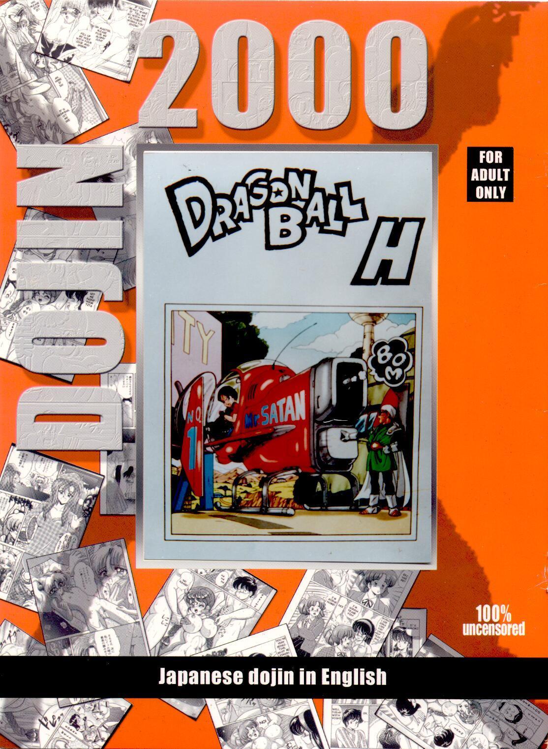 DOUJIN 2000 - Dragonball H 0