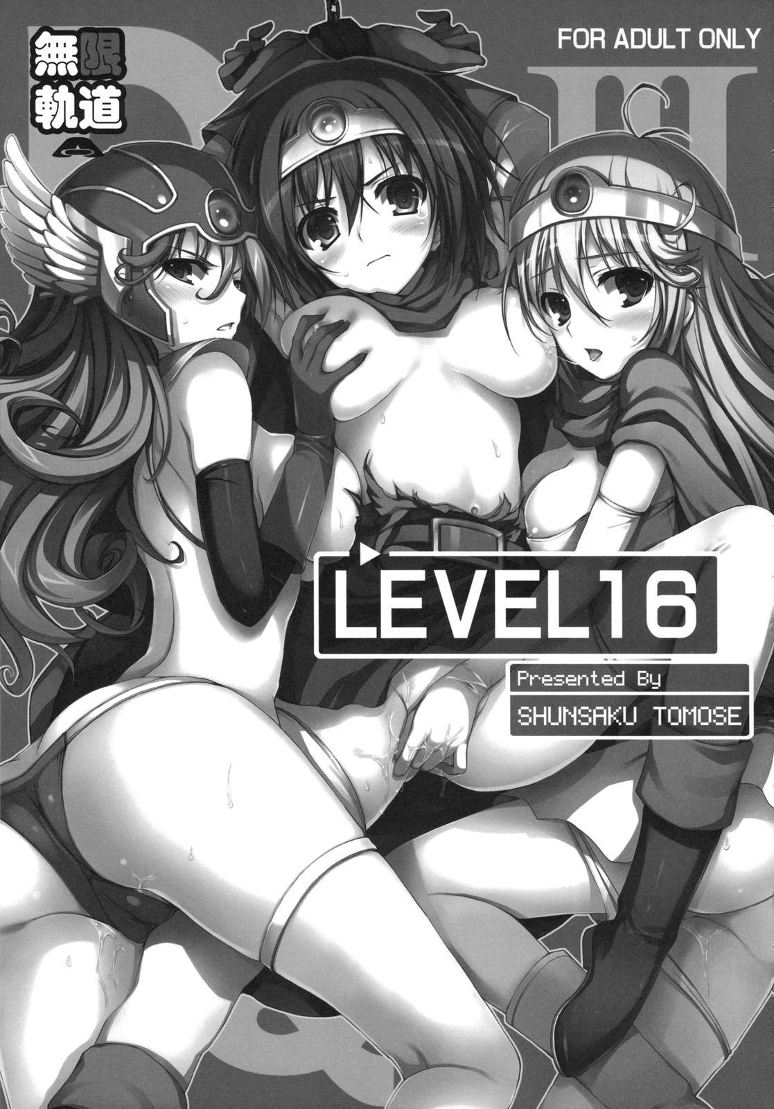 Level 16 7