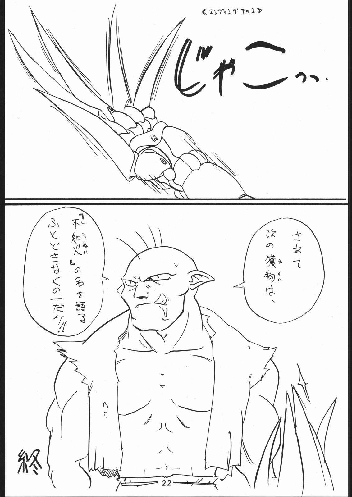 秘密戦隊Nan・Demo-9 20