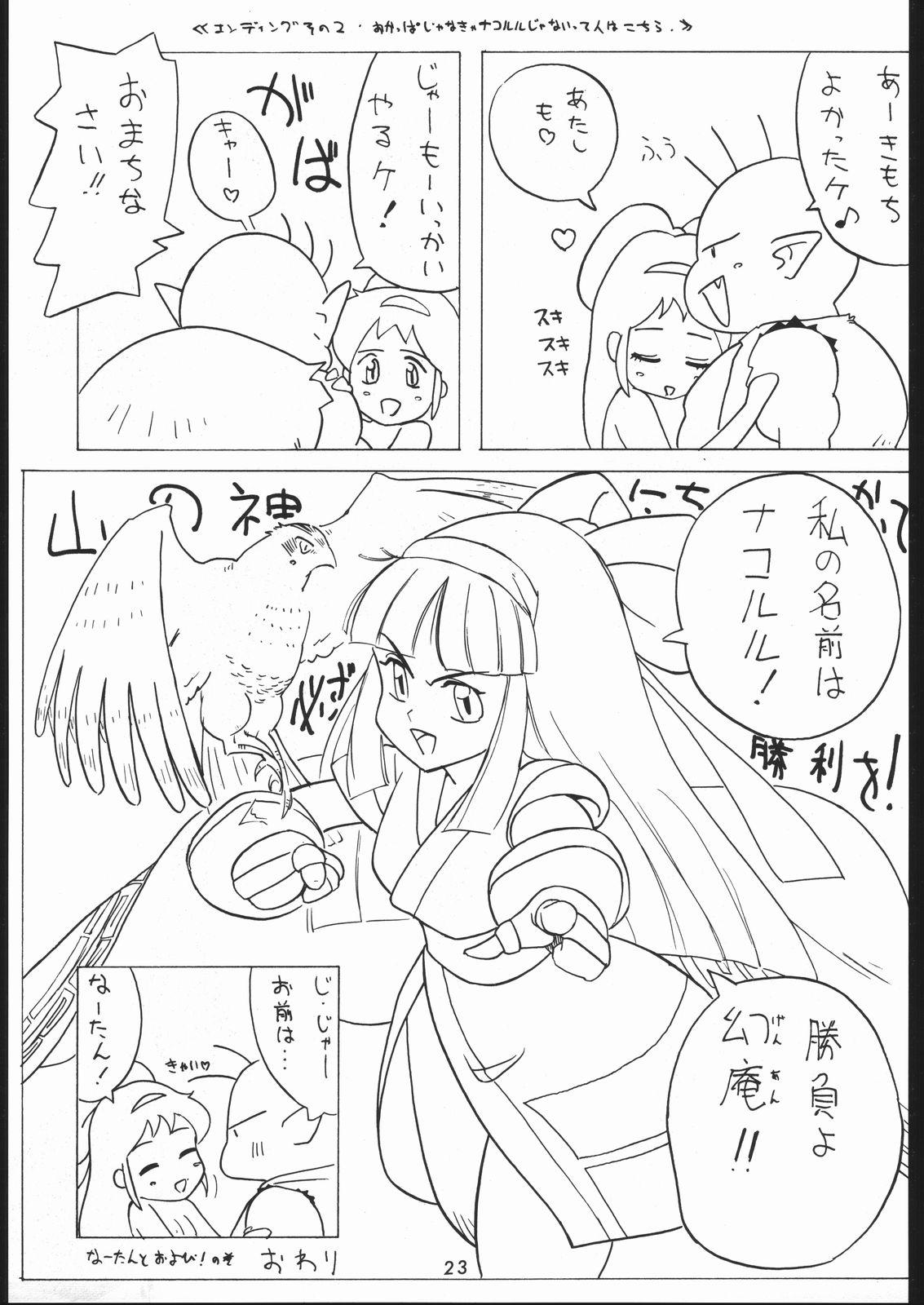 秘密戦隊Nan・Demo-9 21