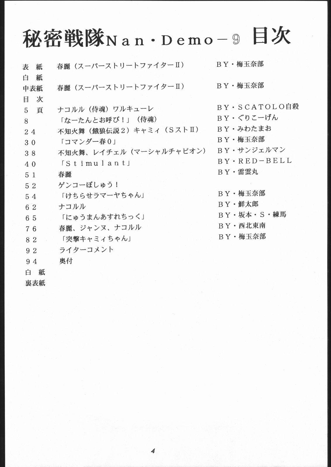 秘密戦隊Nan・Demo-9 2