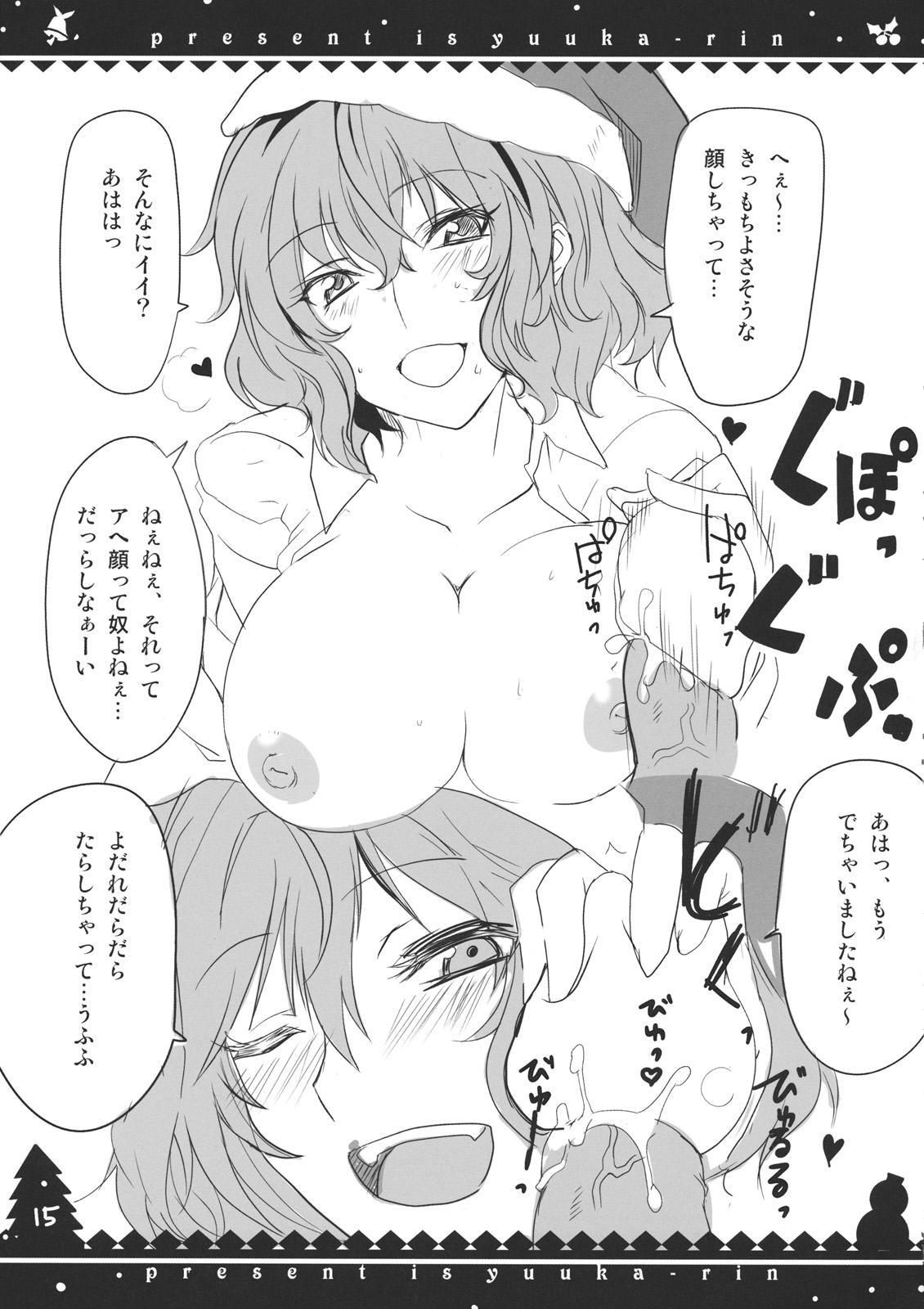 Present wa Yuukarin 14