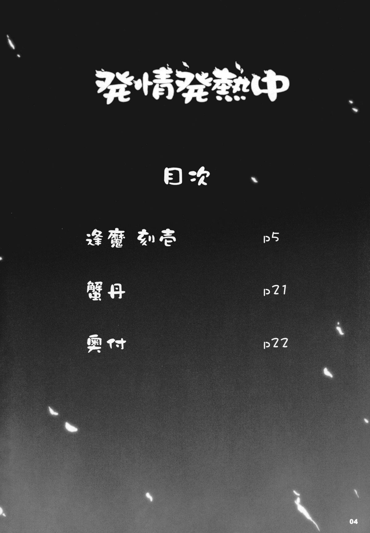 Hatsujou Hatsune Tsuchuu 3