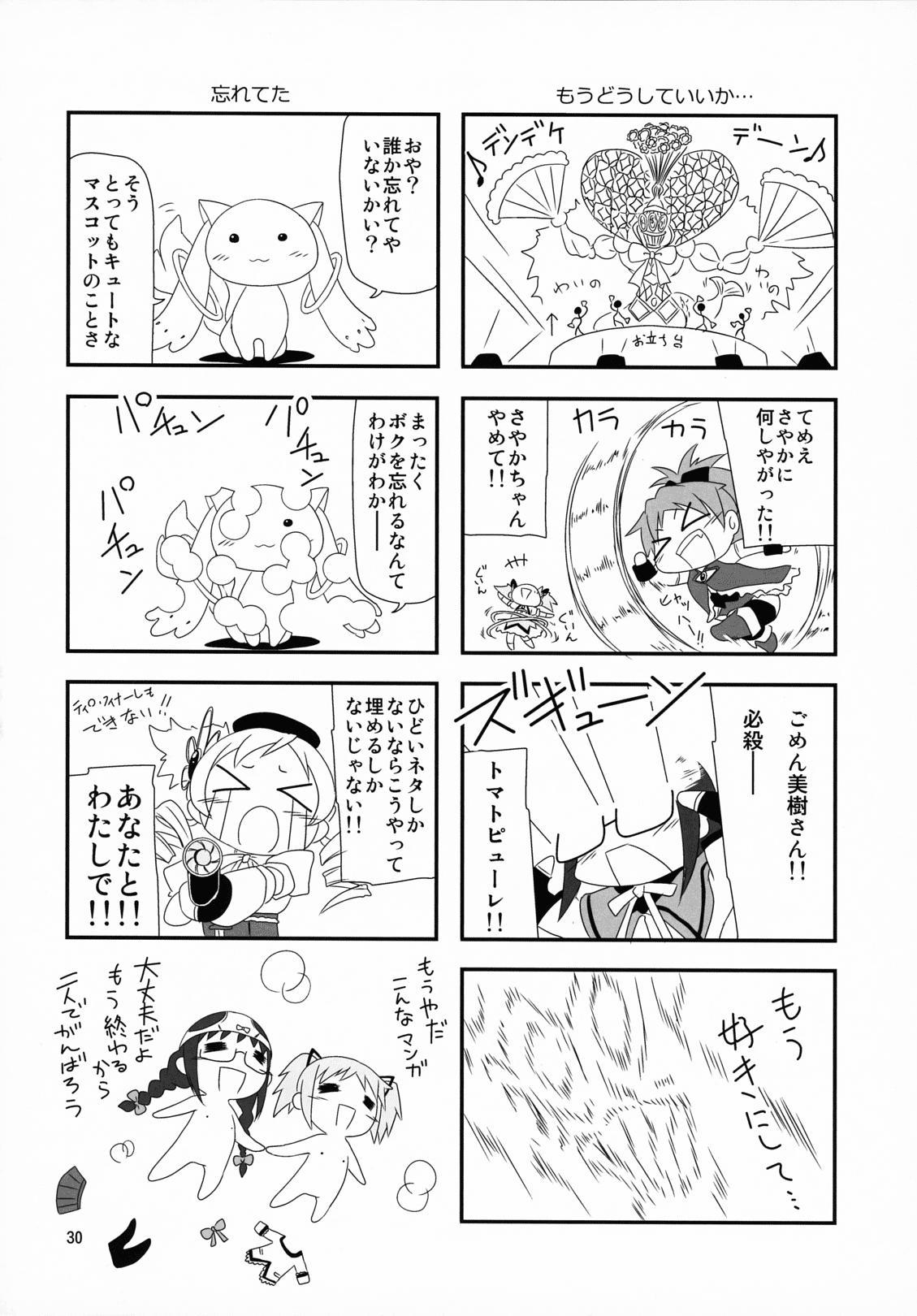 Megahomu-chan ni Kurosto Hakasetai!! 30