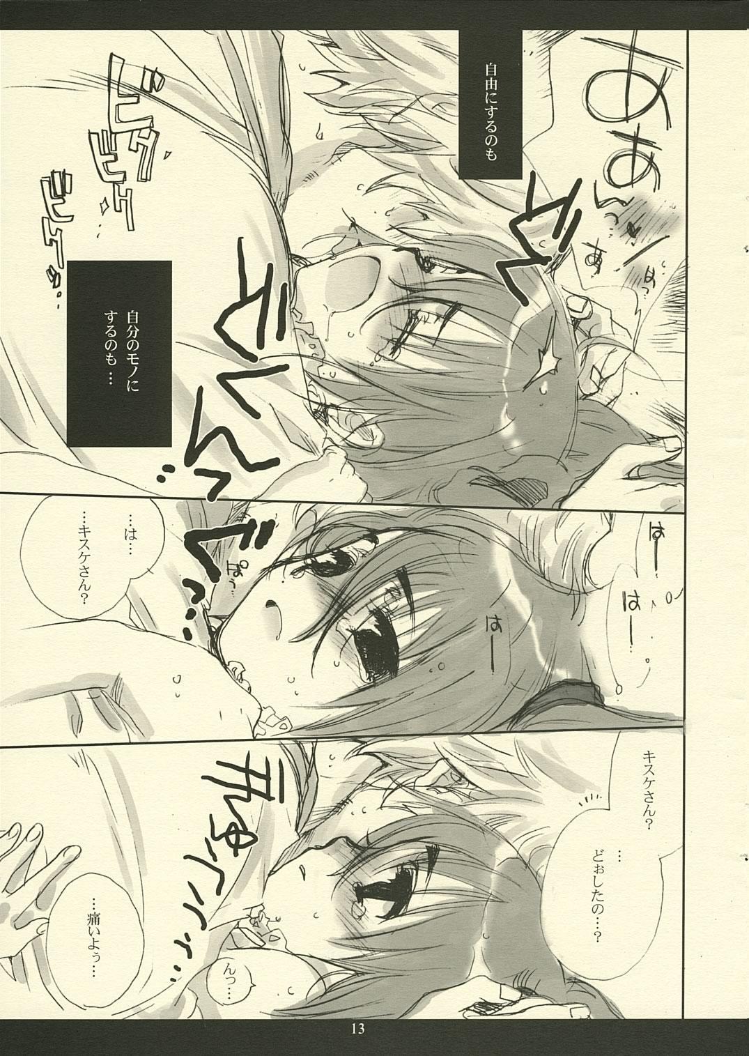 Hotaru 12