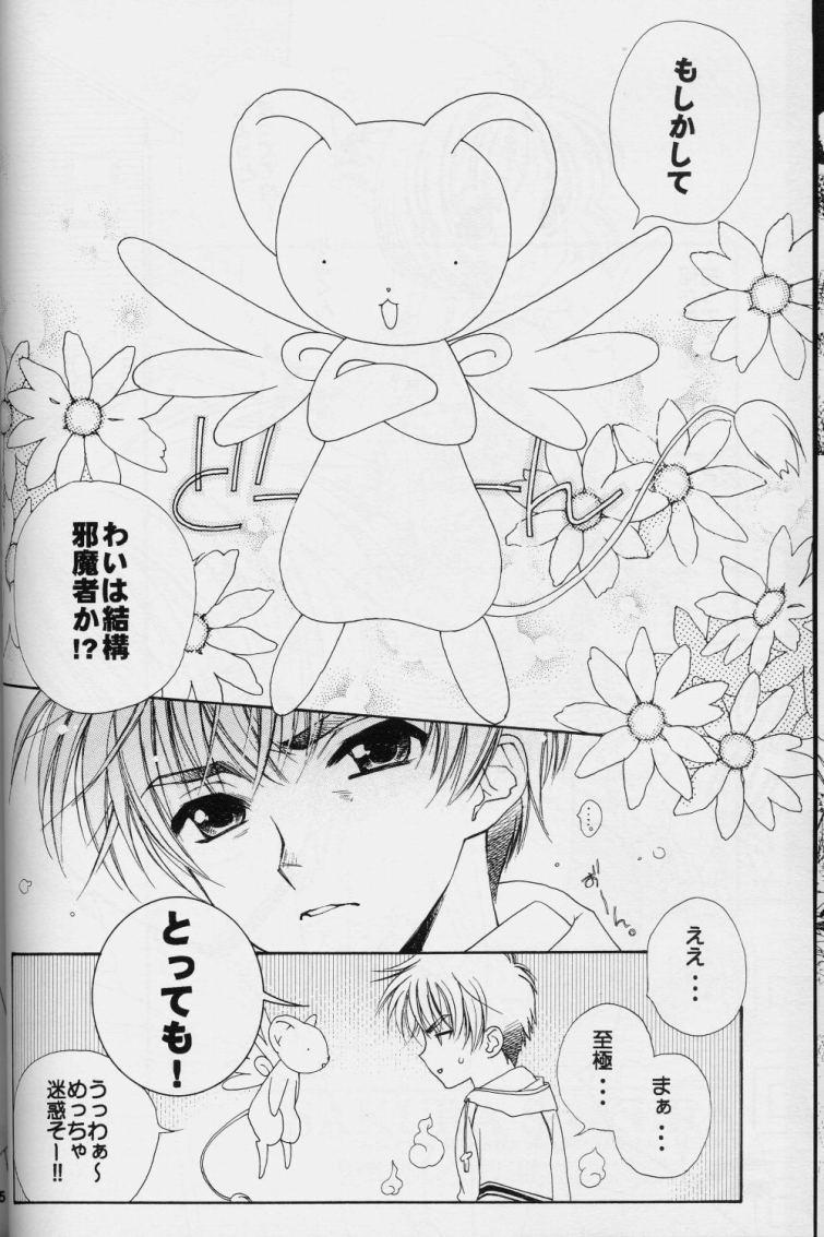 Sakura Sakura 11