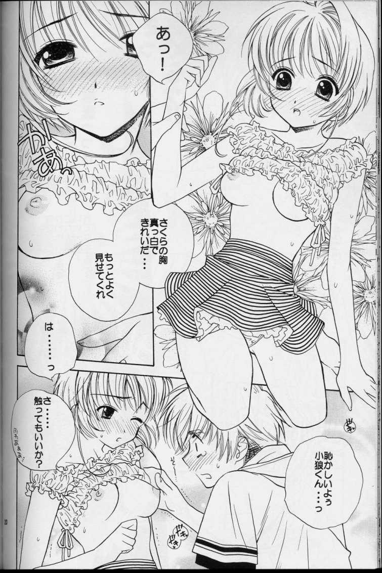 Sakura Sakura 17