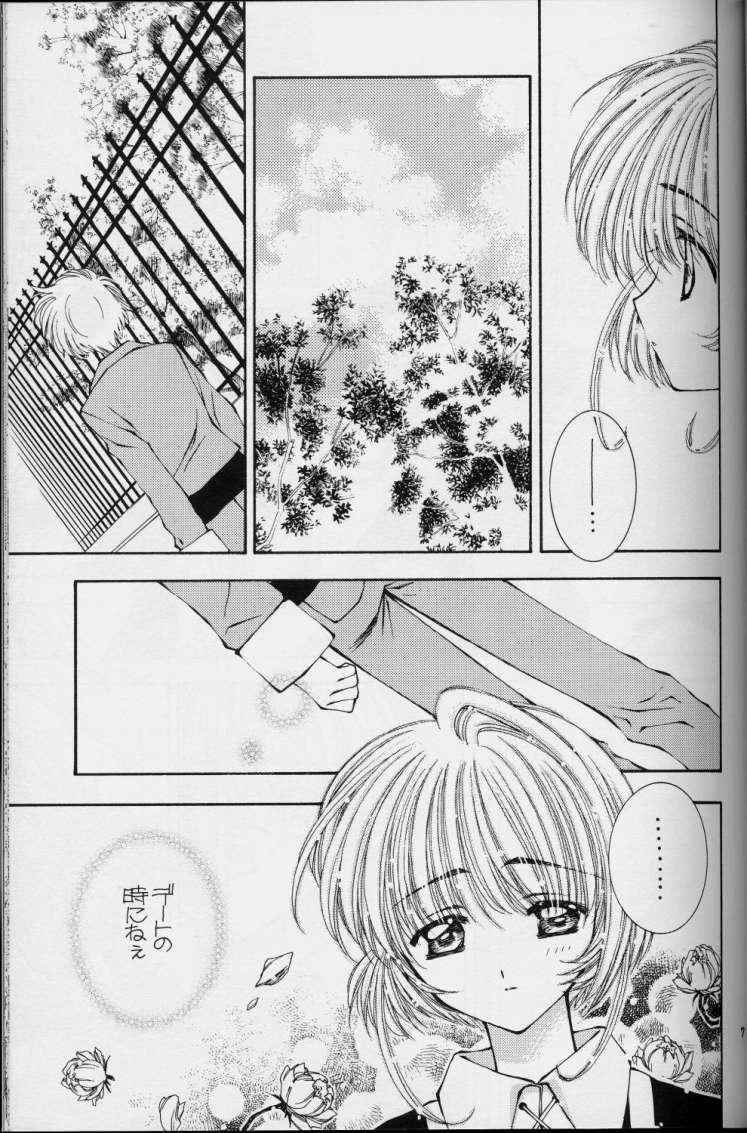 Sakura Sakura 4