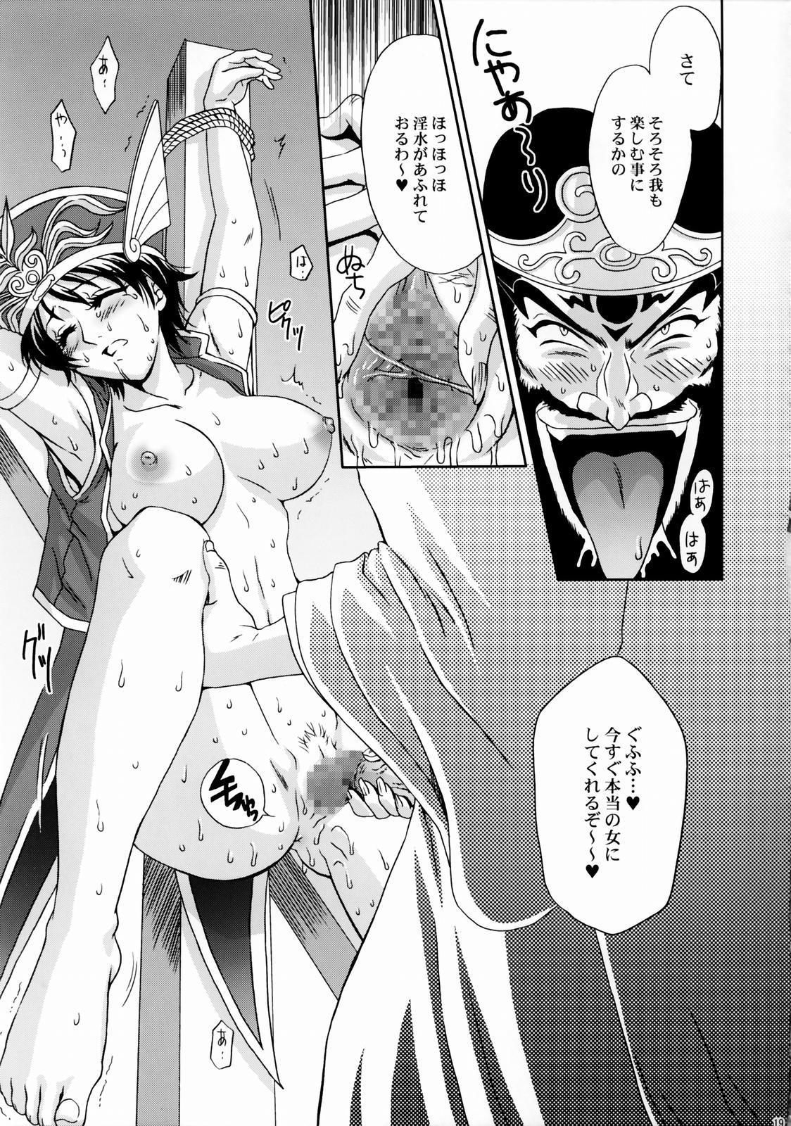 In Sangoku Musou Rikuson Gaiden 17
