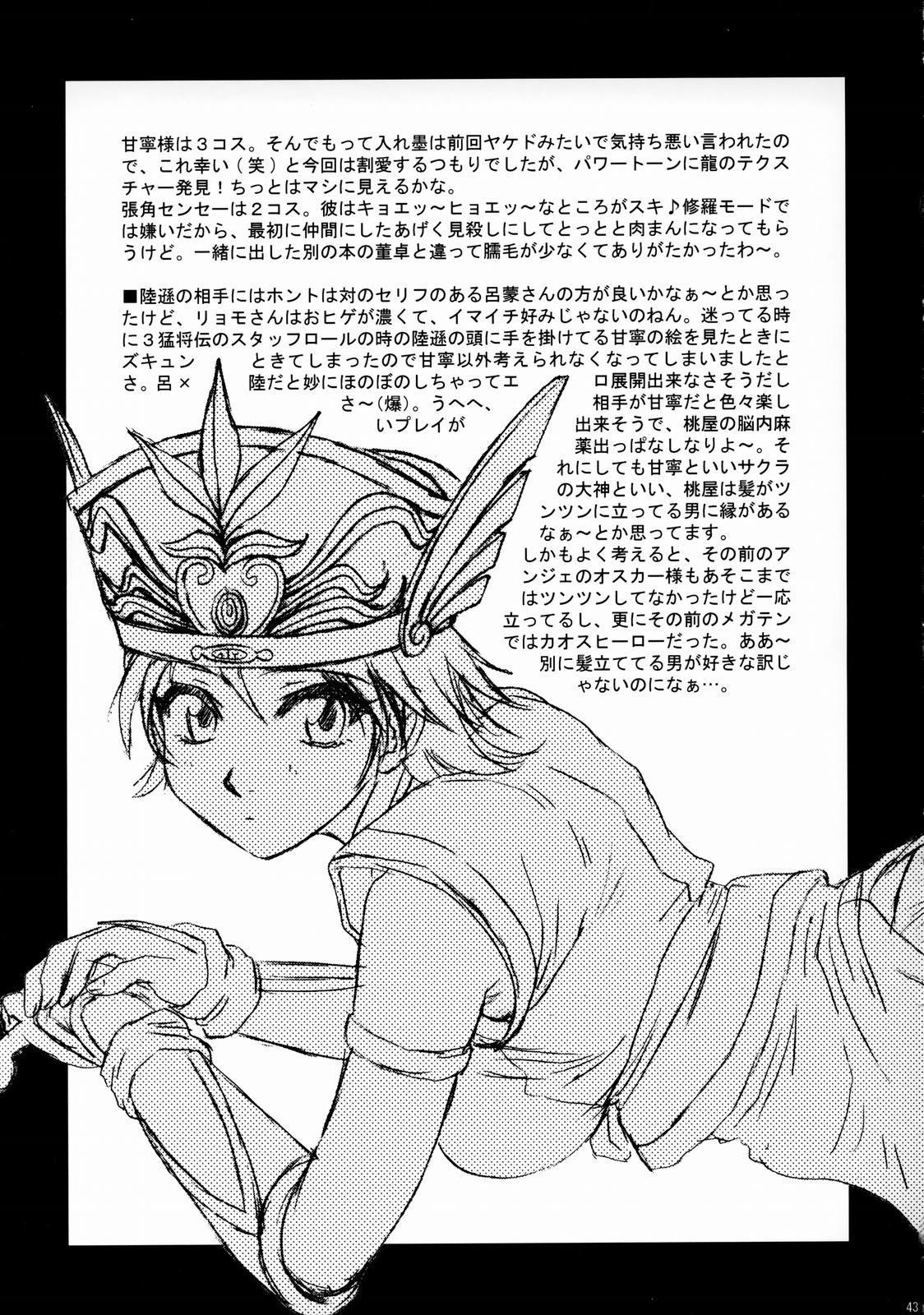 In Sangoku Musou Rikuson Gaiden 41