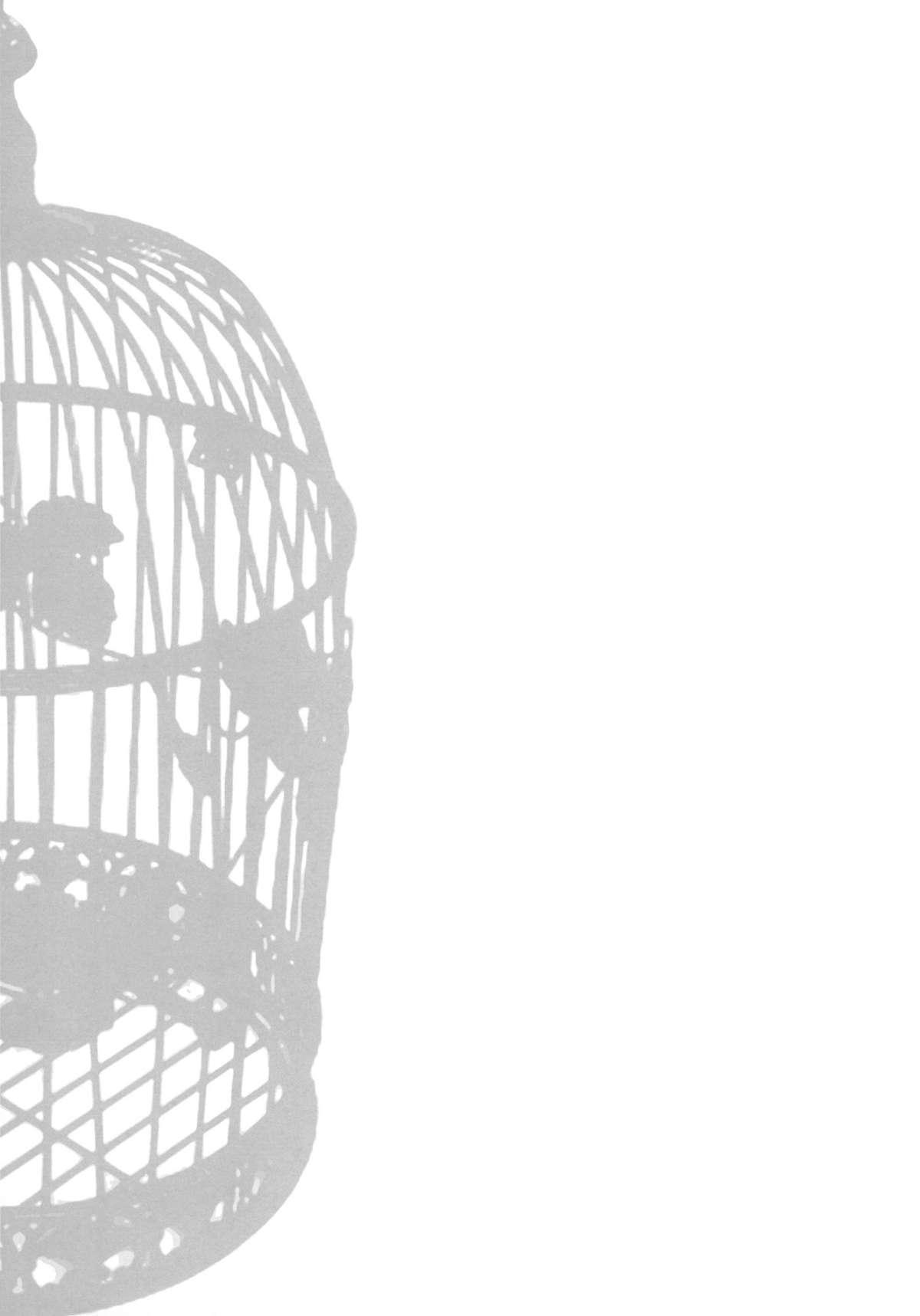 IDOLTIME SPECIAL BOOK YUKIHO HAGIWARA in the Bird Cage 27