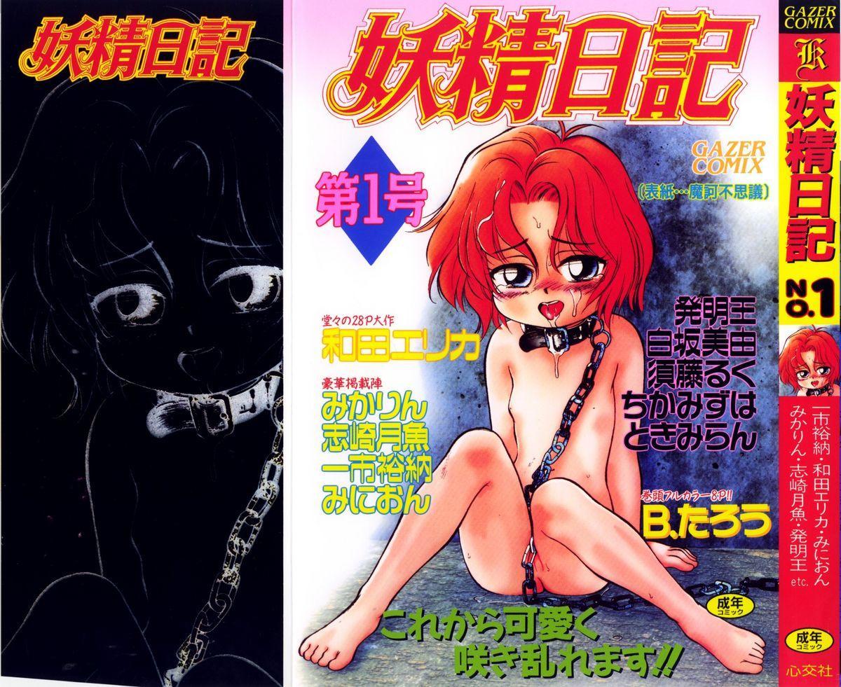 Yousei Nikki No. 1 0