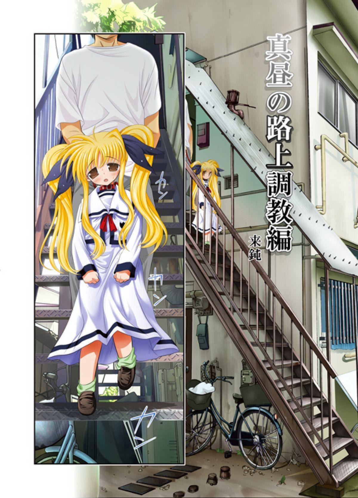 Fate-chan. Mahiru no Rojou Choukyou Hen 2