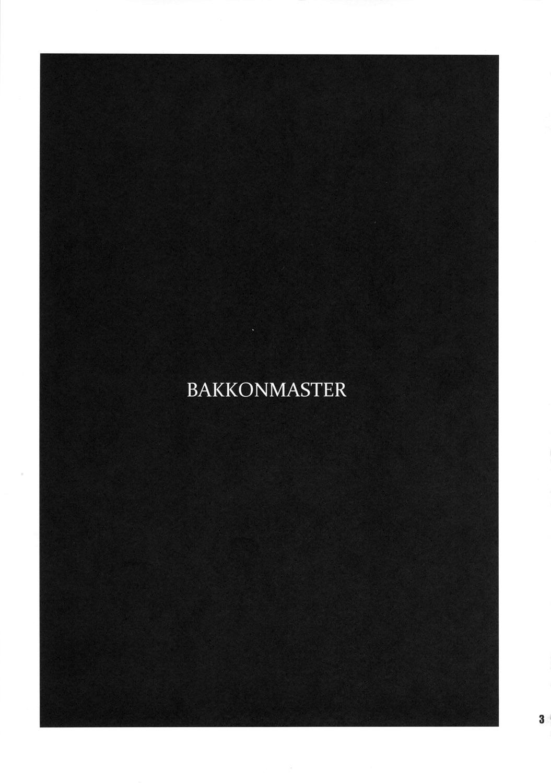 BakkonMaster 1