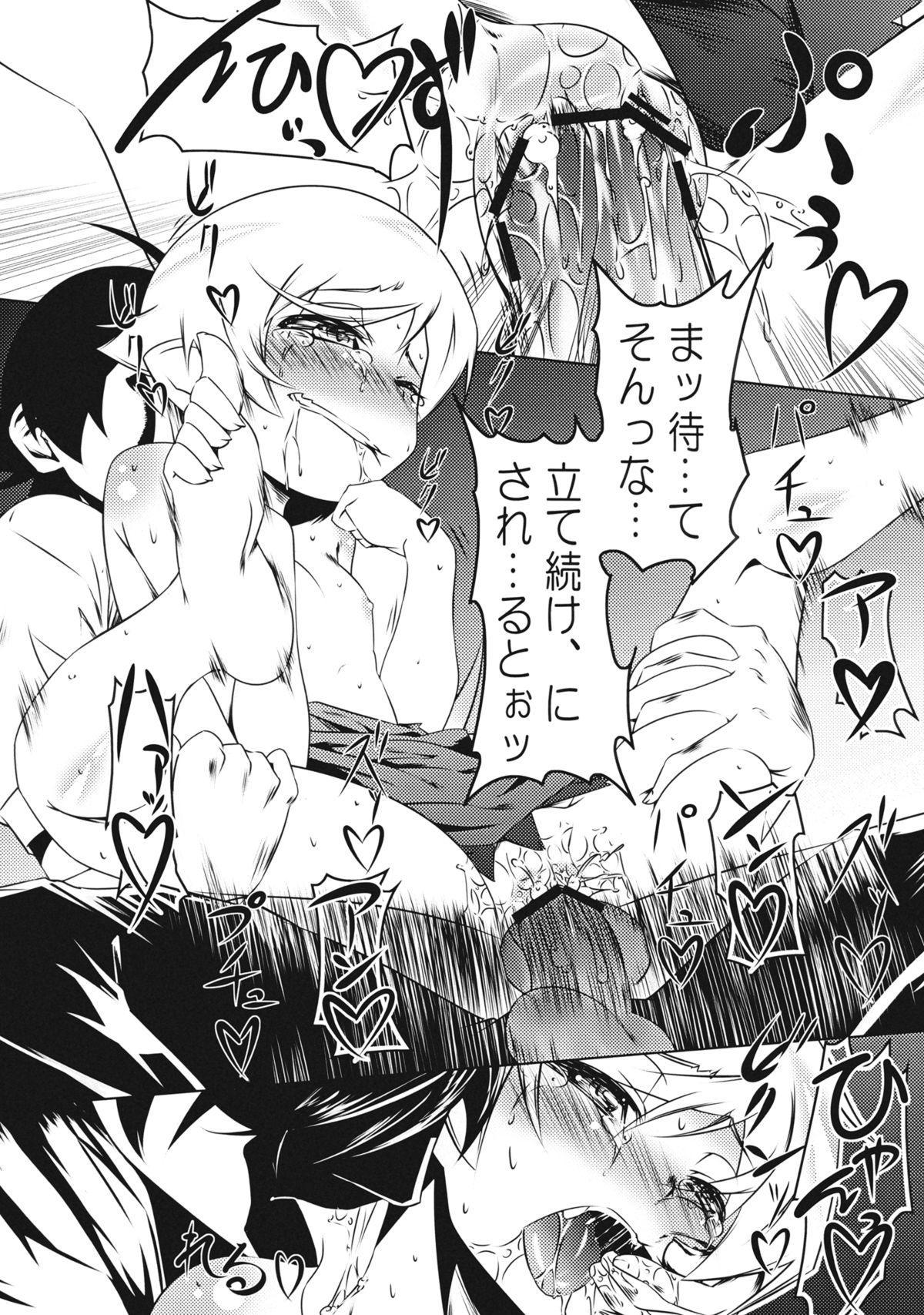 Zokumonogatari 17