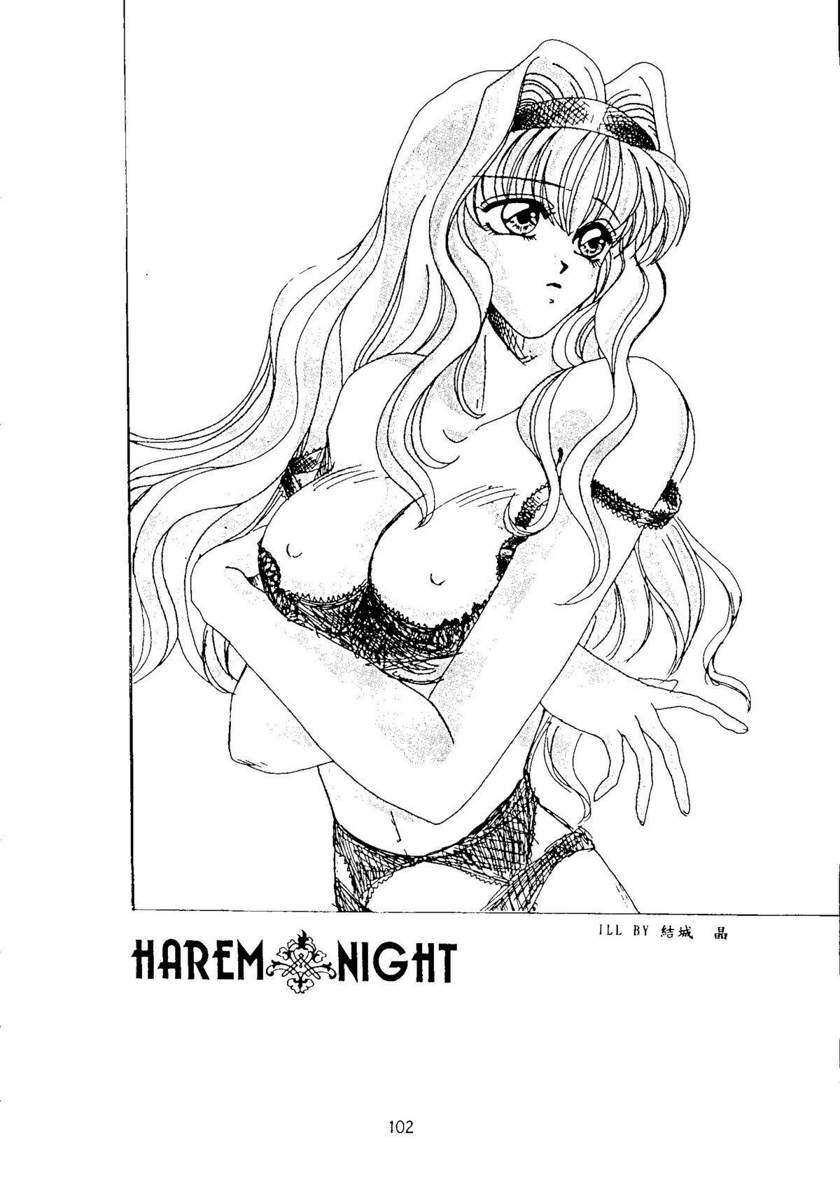 Harem Night 101