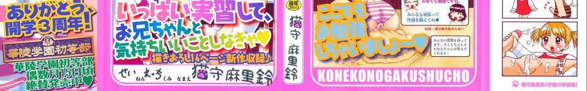 Koneko no Gakushuchou 2