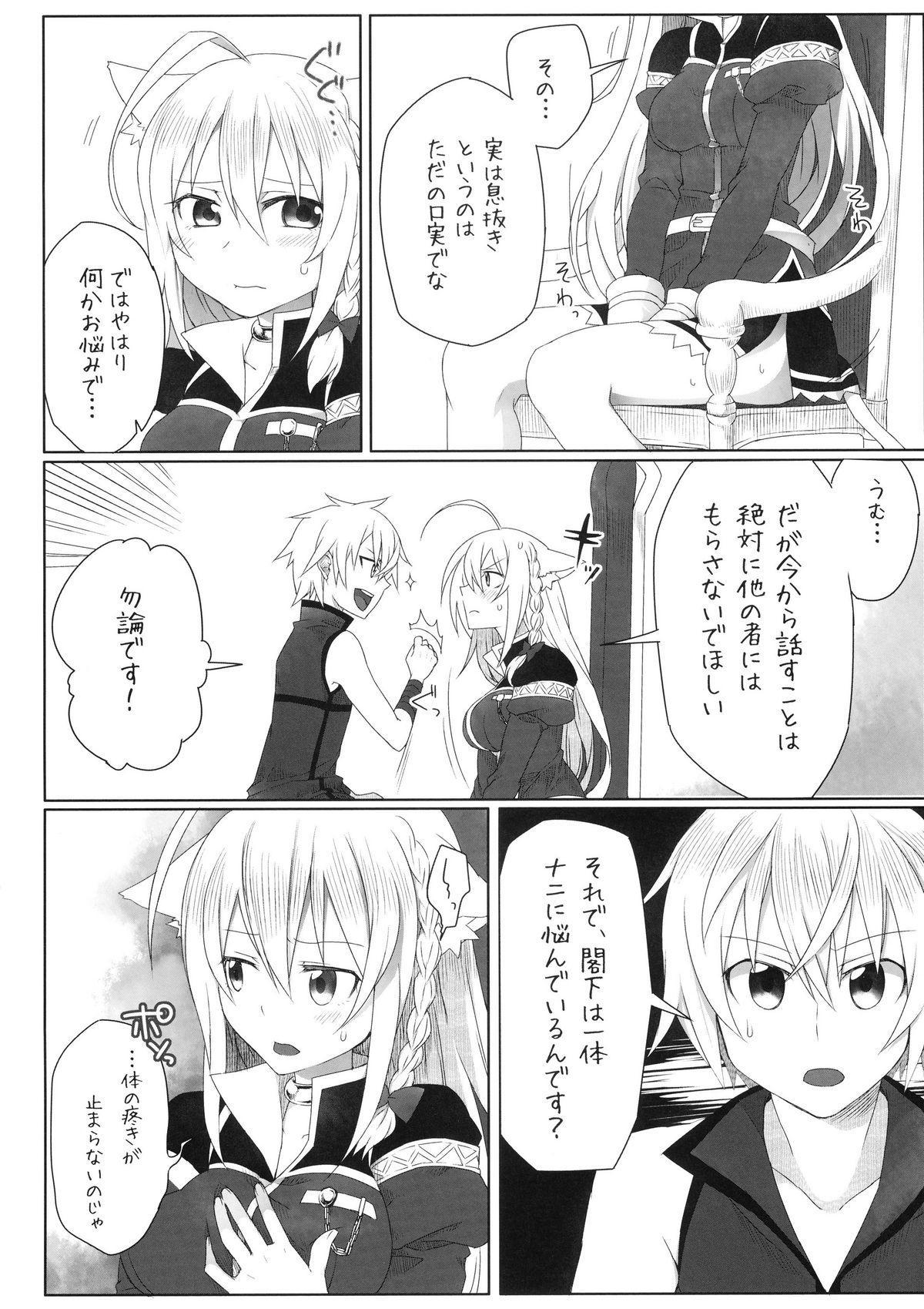 Hatsujou! Neko Hime Choukyou Sen!? 5