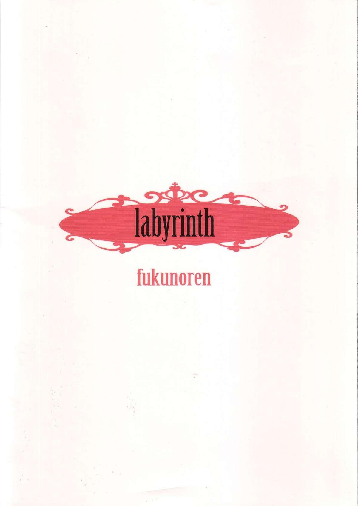 labyrinth 17