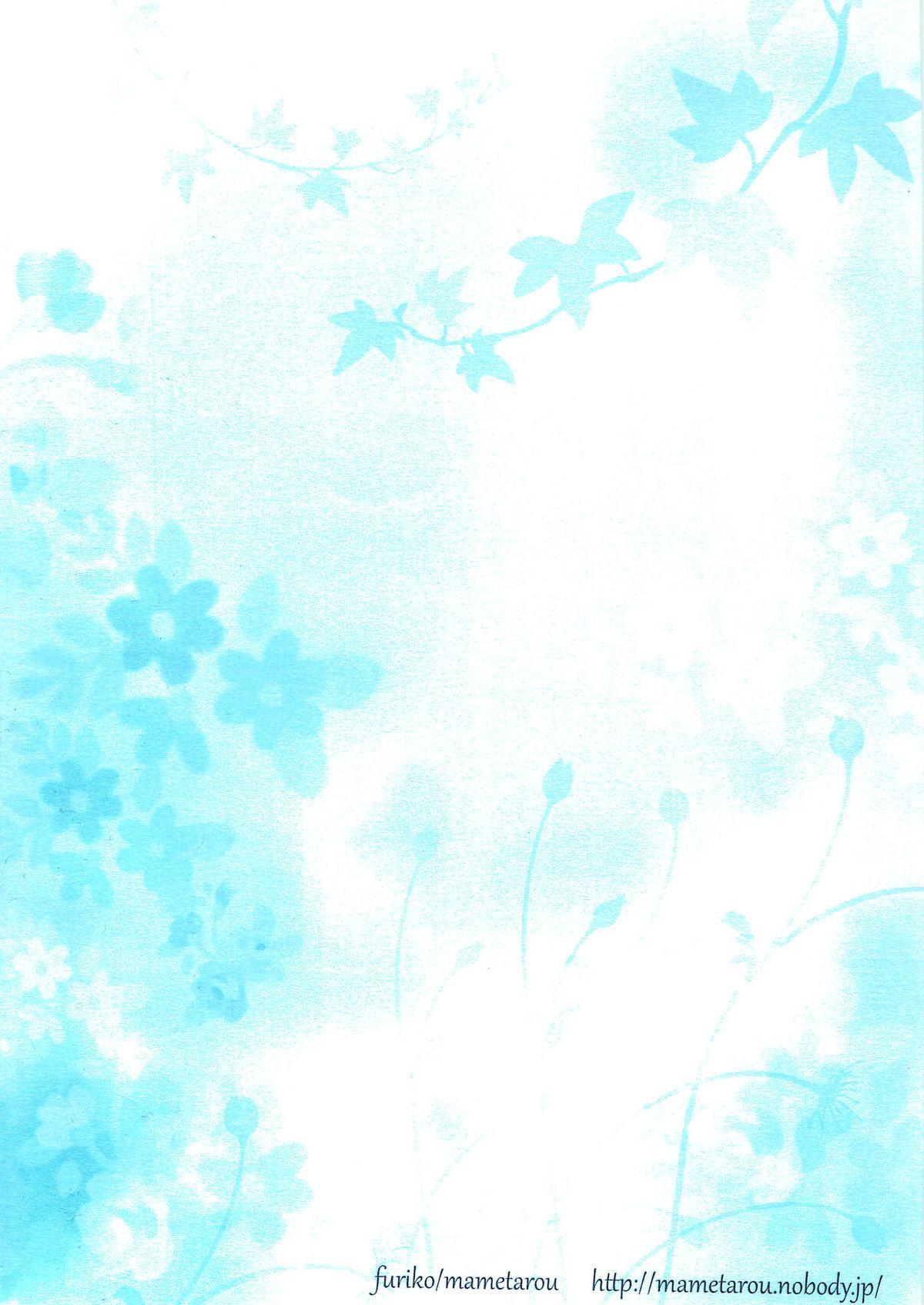 Blue lace flower 30