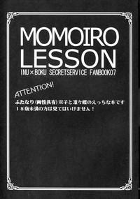 momoiro lesson 2