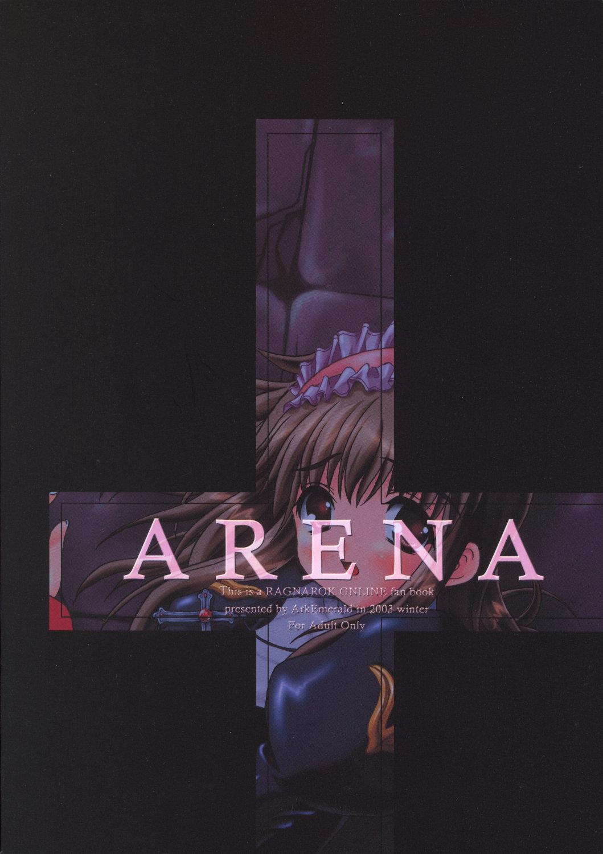 Arena 33