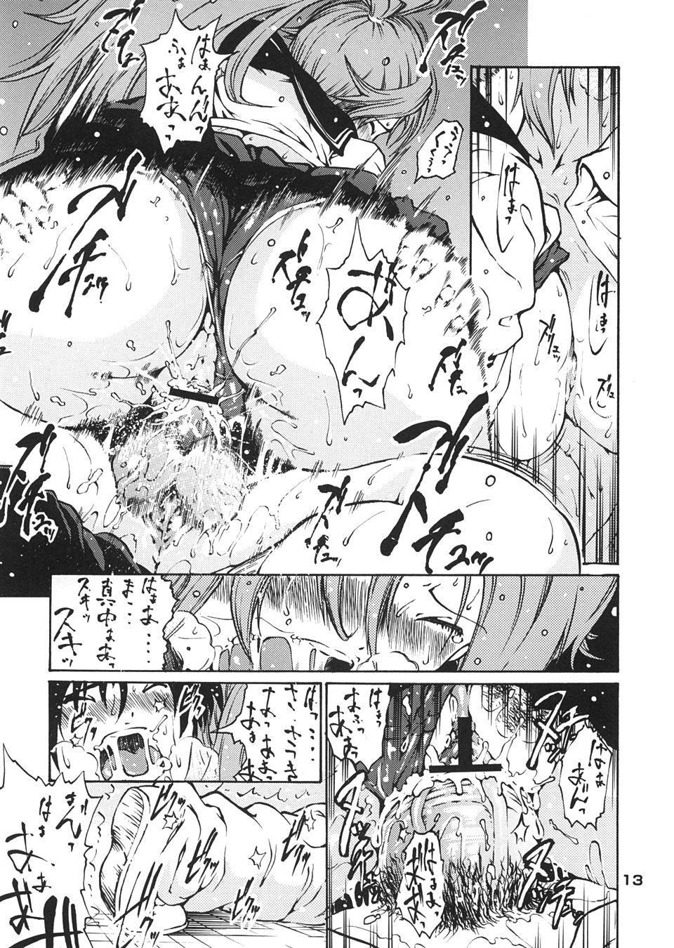 Haru Ichigo - Spring Strawberry 11