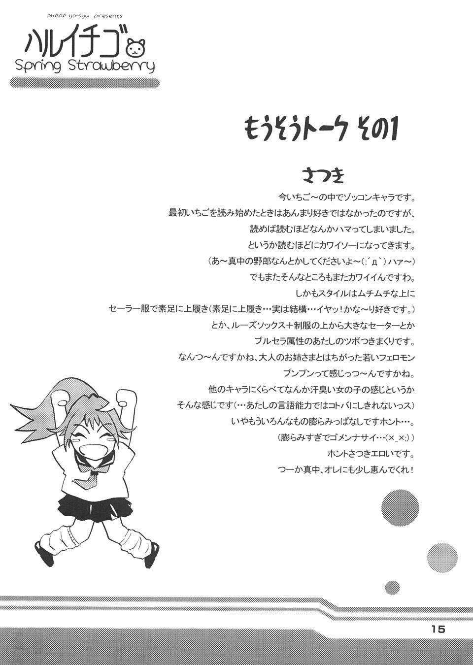 Haru Ichigo - Spring Strawberry 13