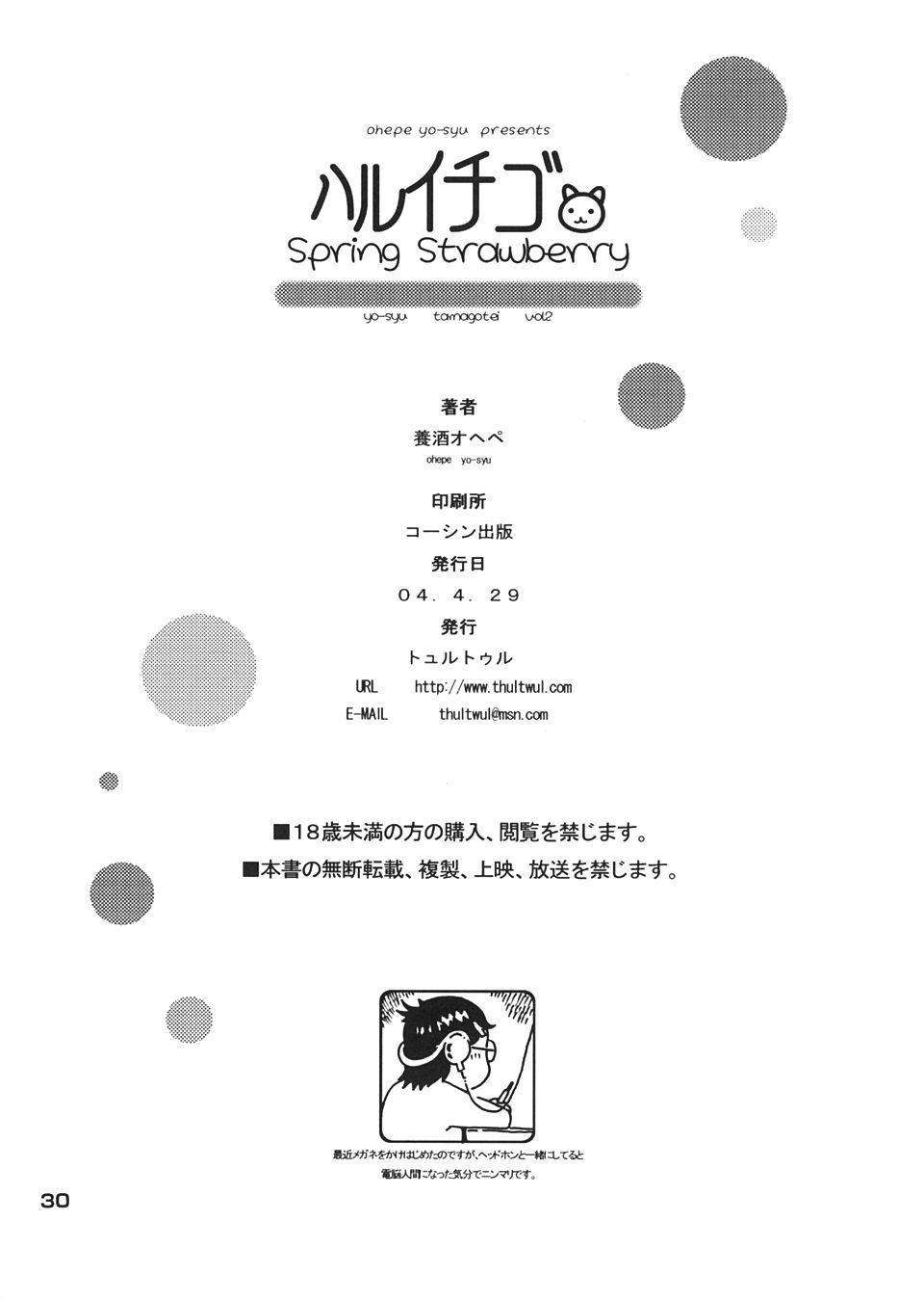 Haru Ichigo - Spring Strawberry 28